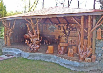 pavilion-cu-loc-de-gratar-si-bucatarie